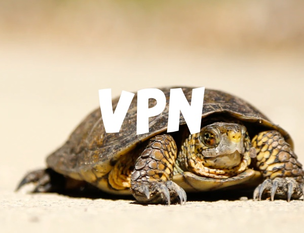 VPN Too Slow? Here's How You Can Boost the Speeds